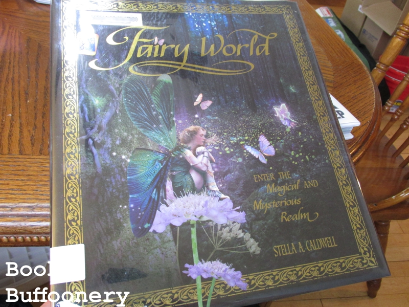 fairy-world-1